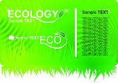 Eco Green Business Card.eps