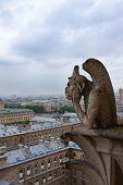 Notre Dame Of Paris, Gargoyle