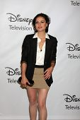 LOS ANGELES - AUG 7:  Lana Parrilla at the Disney/ABC Television Group Summer Press Tour at the Beverly Hilton Hotel on August 7, 2011 in Beverly Hills, CA