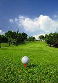 foto of golf  - Golf ball on the tee in the middle of the golf course - JPG