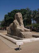 The Alabaster Sphinx At Memphis