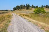 Rosebud Battlefield grassland and road