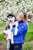 Woman With Puppy Husky