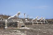 Terrace Of The Lions On Delos