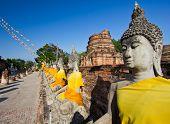 Many Buddha And Old Pagoda