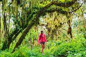 Galapagos tourist walking in Highland forest on Santa Cruz Island in Galapagos Islands. poster