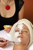 Spa Organic Facial Masque Applied By Esthetician poster