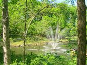 Fountain in the Woods