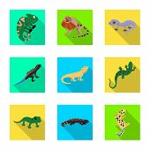 Vector Design Of Tail And Fauna Logo. Set Of Tail And Environment Stock Vector Illustration. poster
