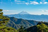 Mount Fuji, The World Heritage. Beautiful Scenery View, Pine Forests In Foreground, Blue Sky And Whi poster