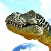 Dinosaur Tyrannosaurus Rex Head