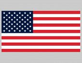Accurate American Flag