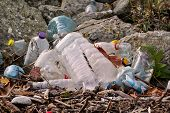 Plastic And Glass Bottles Thrown Away And Left In Nature, Pile Of Garbage. Ecological, Ecology, Recy poster