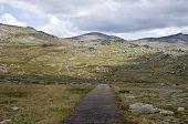 The Walking Track Upto Mount Kosciuszko In The Snowy Mountains, New South Wales, Australia.