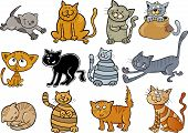 picture of yellow tabby  - cartoon illustration of funny twelve cats set - JPG