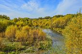 Idyllic Bright Multicolored  Autumn Landscape With Little Fast Forest River, Streaming Between Golde poster