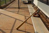 Baseball & Bat and Glove in the Dugout