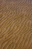 Textura de la costa y la línea curva en Colonia Del Sacramento