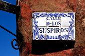 Planta y una pared en la Calle De Los Suspiros