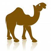 Vector afbeelding van een kameel