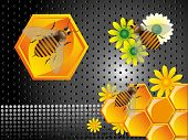 Bees and honeycomb cells