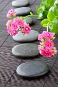 Stones Path With Flowers For Zen Spa Background, Vertical. Selective Focus On First Flower