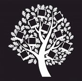 Family  Genealogical Tree On Black Background, Vector Illustration