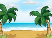 Illustration of coconut trees in the seashore