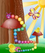 image of glow-worm  - Cartoon picture with nature butterly and caterpillar - JPG