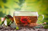 Cup of tea with blooming tea on blur green background