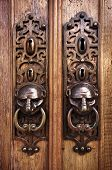 Two door knobs with knocking rings and animal heads in wooden doors