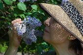 Elderly Woman In A Garden With Lilac