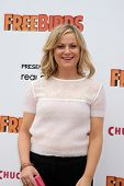 LOS ANGELES - OCT 13:  Amy Poehler at the