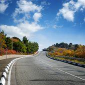 Wide Road Between Autumn Trees