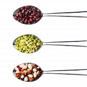 Set Beans In Metal Spoons