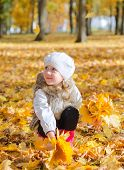 Little Girl Collects Fallen Autumn Leaves.