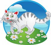 White fun cat on color background