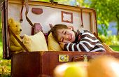 Little Boy Sleeps In A Large Suitcase In The Autumn Park
