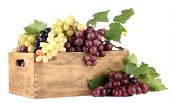 stock photo of crate  - assortment of ripe sweet grapes in wooden crate - JPG