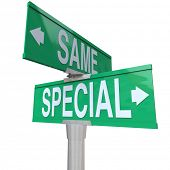 Special versus Same Words Green Two Way Street Signs