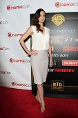 LOS ANGELES - MAR 27:  Sarah Wayne Callies at the  CinemaCon 2014 - Warners Brothers Photocall at Ca