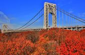 George Washington Bridge;