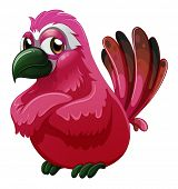 image of angry bird  - Illustration of a big bird on a white background - JPG