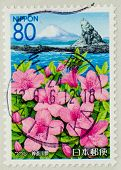 JAPAN - CIRCA 1990th: A stamp printed in japan shows Landscape  and flowers, circa 1990th
