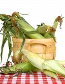 Bushel Of Corn