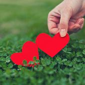 pic of red clover  - Red paper hearts in green clover - JPG