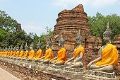 Picture of aligned buddha statues with orange bands in ayutthaya, thailand.