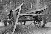Wagon in Monochrome