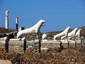 Lions Of Delos,greece