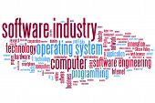 Software Industry